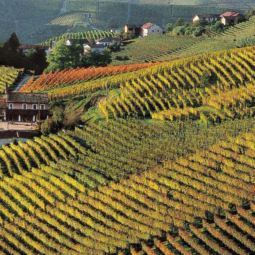 Cocchi Piemonte Brut NV